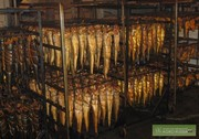 от производителя морепродукты, икра и рыбные отходы оптом