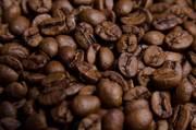 Свежий кофе для Вендинга от производителя