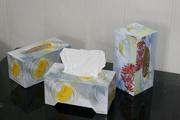 Бумажные салфетки,  туалетная бумага,  кухонные полотенца оптом