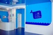 Франшиза детского бассейна «Синий Кит»