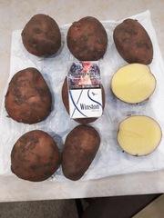Картофель со склада от прямого поставщика.